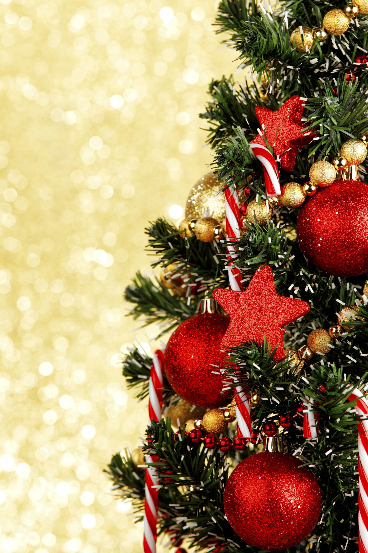 Come decorare l 39 albero di natale primo taglio magazine for Obi albero di natale