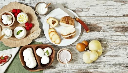Come conservare formaggi e latticini
